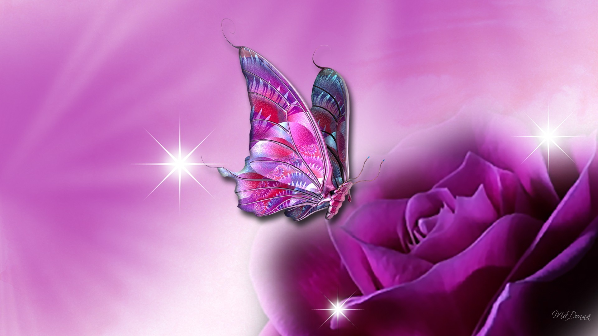 Computer Wallpapers Purple Butterfly 1920x1080